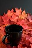 Cieszyć się spadek z gorącą filiżanką herbata Fotografia Stock
