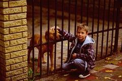 Cieszy się być mój zwierzęcia domowego psem Chłopiec adoptuje zwierzę domowe psa od zwierzęcia schronienia Chłopiec sztuka z zwie obrazy royalty free