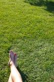 Cieszy się lato w parku Zdjęcie Royalty Free