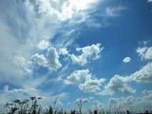 Cieux bleus Image libre de droits