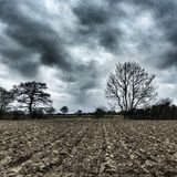Cieux déprimés d'hiver, Felixstowe Photographie stock libre de droits