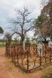 Cieux de soirée au-dessus de cimetière Photos stock