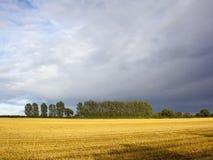 Cieux orageux Images libres de droits