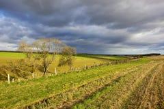 Cieux orageux d'automne Images libres de droits