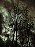 Cieux sombres Photo libre de droits