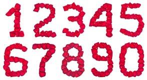 Cifre del petalo Immagini Stock Libere da Diritti