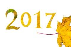 2017 cifre hanno scolpito dalle foglie di acero su un fondo bianco Fotografia Stock