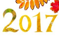 2017 cifre scolpite dalle foglie di acero su fondo bianco Fotografie Stock Libere da Diritti