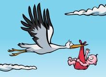 Cigüeña con el bebé Fotos de archivo