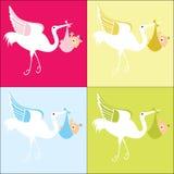 Cigüeña con opciones del color del bebé 4 Fotos de archivo