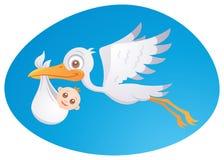 Cigüeña de la salida de bebé Imagen de archivo libre de regalías