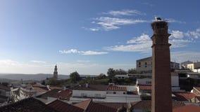 cigüeña 4K en la jerarquía sobre una columna en la ciudad de Jerez de los Caballeros metrajes