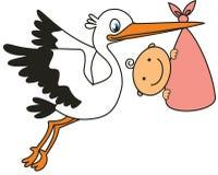 Cigüeña y bebé Fotografía de archivo