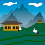 Cigüeñas en campos de la subida Imagen de archivo libre de regalías