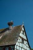 Cigüeñas en la jerarquía del tejado, Francia Fotos de archivo libres de regalías