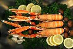 Cigala mediterranean lobster Royalty Free Stock Image