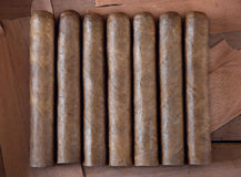 Cigar. Seven cigars on a brown background Stock Photography