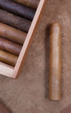 Cigar. And  box on a brown background Stock Image