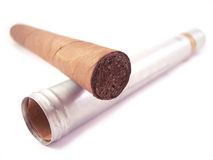 Cigar. A close up of a cigar and it's case over a white background Stock Images