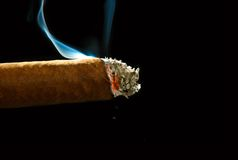 Cigar. A smoking, burning cigar with ashes on a dark background Stock Image
