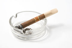 Cigar on ashtray. Close up of cigar and ash-tray on white background Stock Image