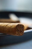 A cigar in ashtray Stock Photography