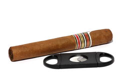 Cigar and Cigar Cutter. Isolated close up view of a cigar and a cigar cutter Royalty Free Stock Photo