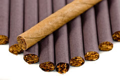 Cigar and cigarette Royalty Free Stock Photography