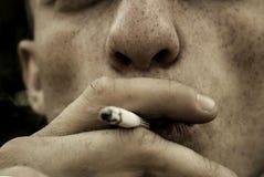 Cigar, Cigarette, Close-up Royalty Free Stock Photos