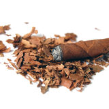 Cigar Close Up Stock Photography