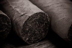 Cigar Close Up Stock Photo