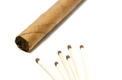 Cigar and few matches Stock Photo