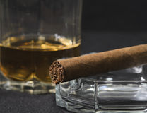 Cigar and goblet whisky Royalty Free Stock Photo