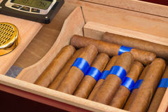 Cigar Humidor Royalty Free Stock Photo