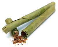 Cigar locally named as Cheroot in Myanmar Stock Photography