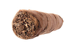 Cigar macro. Cuban cigar closeup isolated over white background. Front view Stock Photography