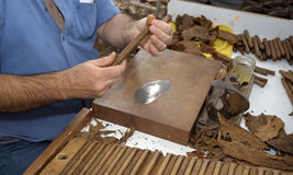 Cigar making Royalty Free Stock Images
