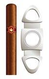 Cigare et massicot. illustration stock