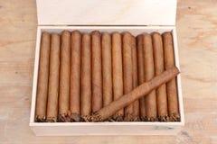 Cigares néerlandais de qualité Image stock