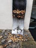 Cigarette photos libres de droits