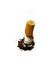 Cigarette. End on white background Royalty Free Stock Photos