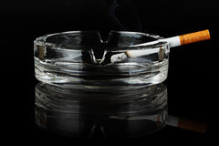 Cigarette. Stock Images