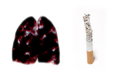 Cigarette ash Stock Images