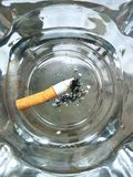 Cigarette. With  ash Royalty Free Stock Photos
