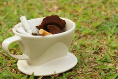 Cigarette in the ashtray on a green grass. Stock Image