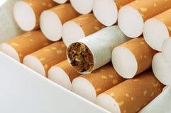 Cigarette avec le filtre brun dans le paquet Images stock