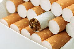 Cigarette with brown filter in pack Stock Images