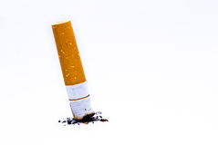 Cigarette butt. On white background Stock Images