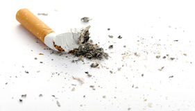 Cigarette butt. Photo closeup. On white Stock Image