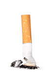 Cigarette butt. With ash isolated on white background Royalty Free Stock Image
